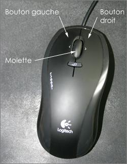 Lilapuce la molette de la souris - L histoire de la souris ...