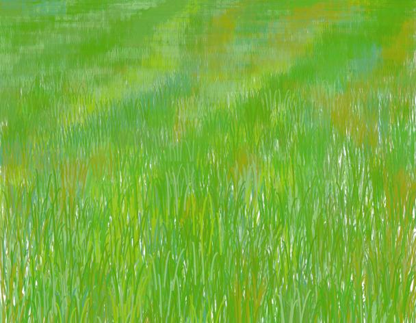 Lilapuce Prairie
